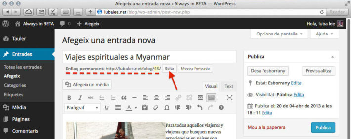 Editor d'entrades de WordPress